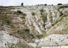 haiti-eroded-hillside-sml1